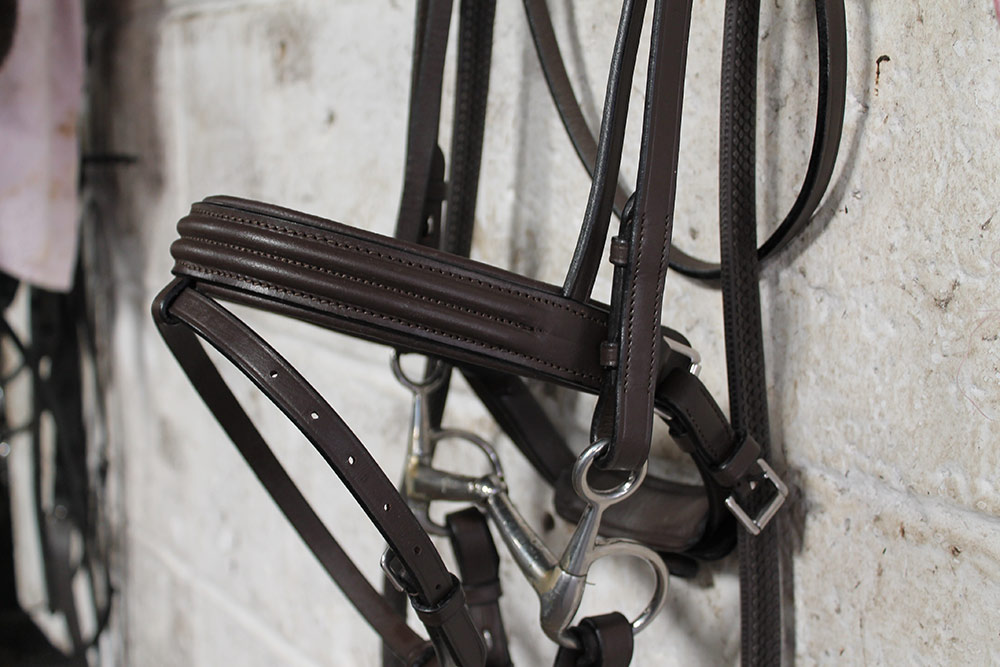 Cavaletti Collection Discovery Bridle